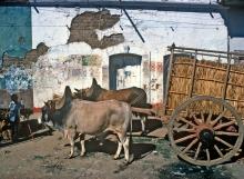 Cart in San Christobal de Las Casas