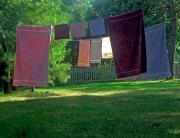 Laundry, Cape Cod